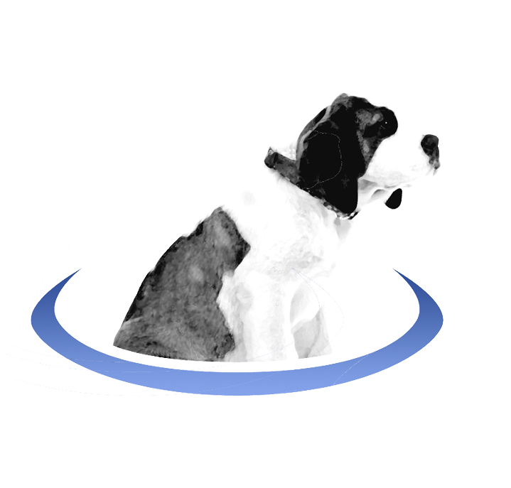 BerniePortal-Dog_logo_2017 (1)