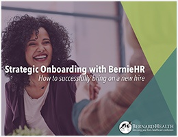 Strategic-Guide-to-BernieHR-e-book-cover-image.jpg